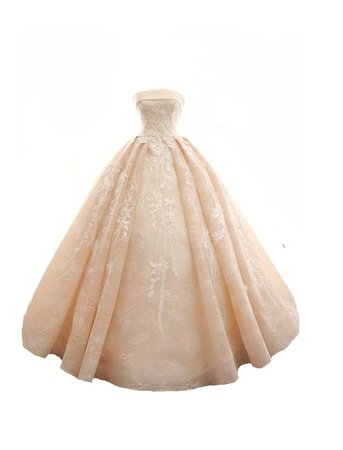 Nude organza strapless ball gown