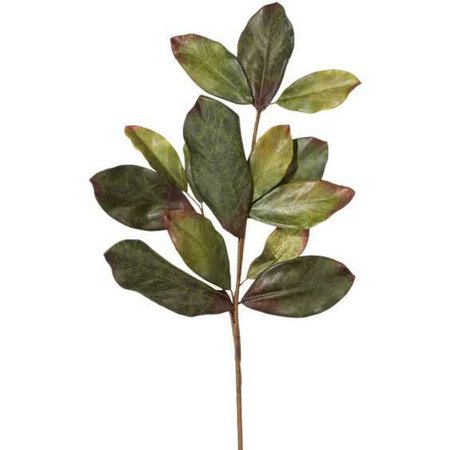 leafy (wowitsjessica)