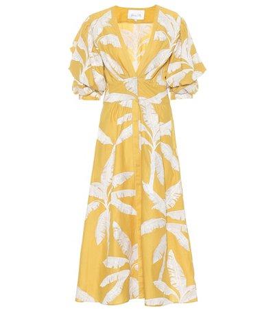Wild Flower cotton dress