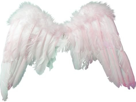 white angel wings pale png filler aesthetic