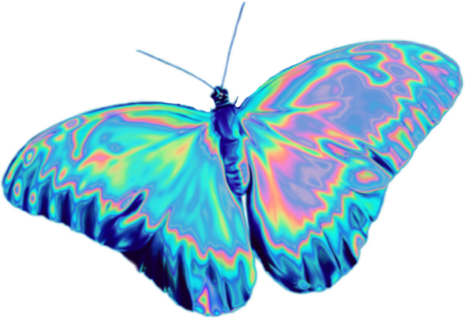 butterfly vaporwave holographic aesthetic nature...