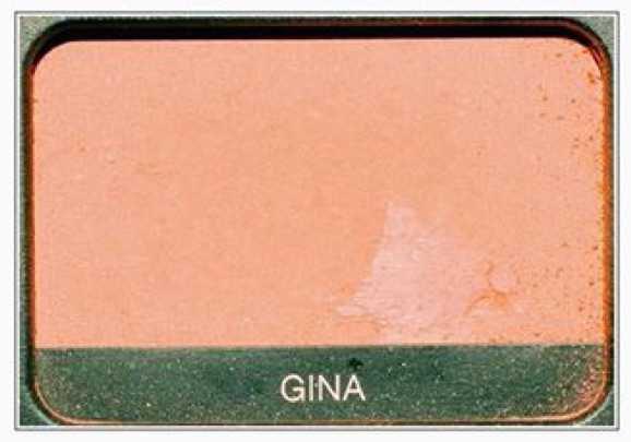 """Gina"" Eyeshadow - @polyvorenomore PNG Collection"