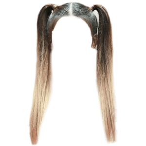 BROWN HAIR OMBRE PIG TAILS PNG