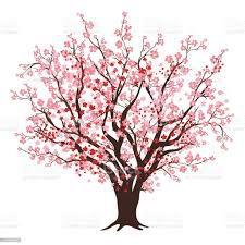cherry blossom tree - Google Search