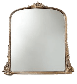 Gleaming Primrose Mirror | Gold, 3' | Decorist