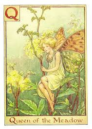 queen of the fairies - Google Search