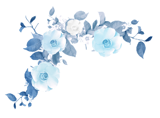 light blue flowers png