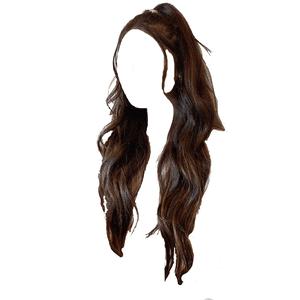 brown hair png half up