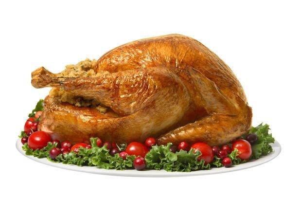 turkey - Google Search