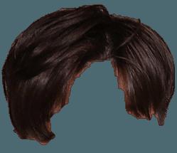 Short Med Brown straight hair men (Heavenscent - Bang Yongguk)