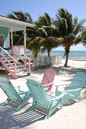 tropical beach summer aesthetic
