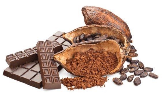 Cacao-White-Background-Image.jpg (565×327)