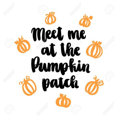 pumpkin quotes - Google Search