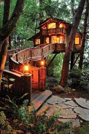 Heidi and Paul Danilchik's Tree House - Tree House Tours