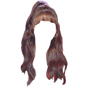 brown hair bangs png half up
