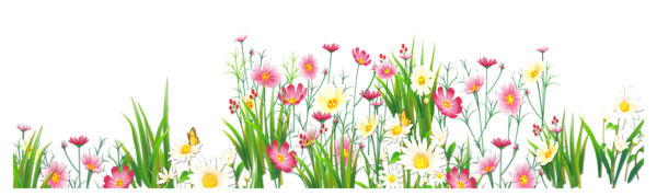 Flowers and Grass PNG Picture Clipart​ | Gallery Yopriceville - High-Quality Images and Transparent PNG Free Clipart