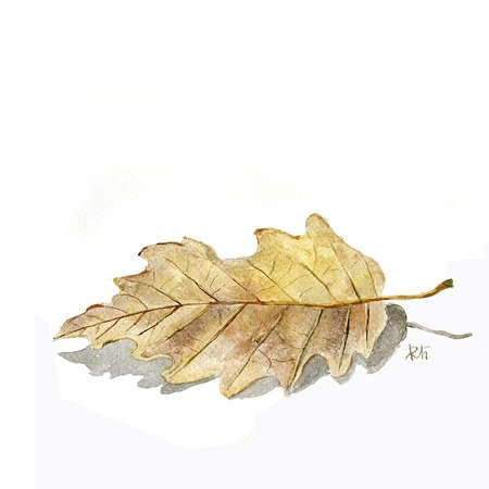 leaves brown watercolor - Google Search