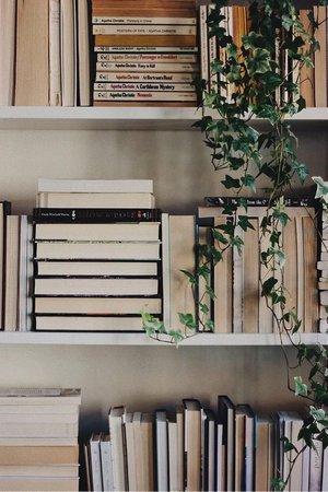 books aesthetic