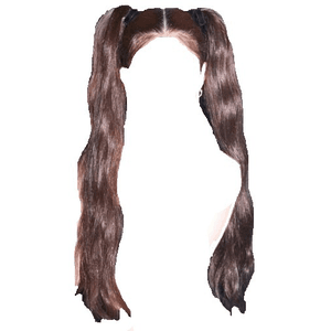 Brown Ombre Hair Pigtails