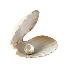 Pearl Prynne