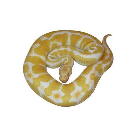 yellow snake png filler