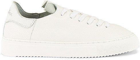 Poppy Sneaker