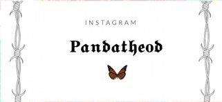 Pandatheod Logo