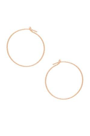 J Lo Small Hoop Earrings