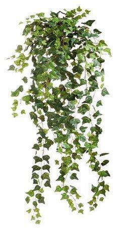 som nice leafs 4 u