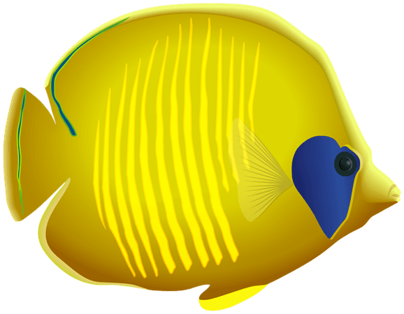 Yellow Fish PNG Clipart​ | Gallery Yopriceville - High-Quality Images and Transparent PNG Free Clipart
