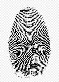 forensic science png - Google Search