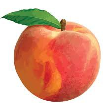 peach - Google Search