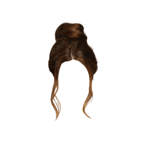 Brown Bun Hair PNG
