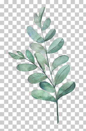 Watercolor painting Green, Watercolor flowers, green plant painting PNG clipart | free cliparts | UIHere