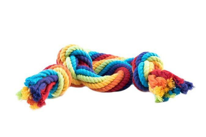 Pride Dog Rope | Etsy
