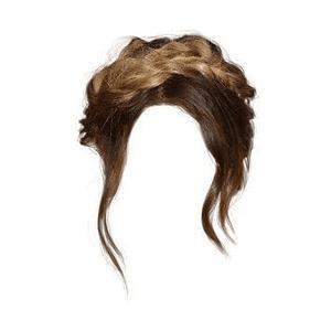 Brown Hair Braid Crown