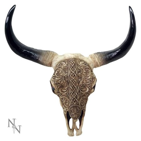 Nemesis Now First nation, engraved cow skull wall plaque cream