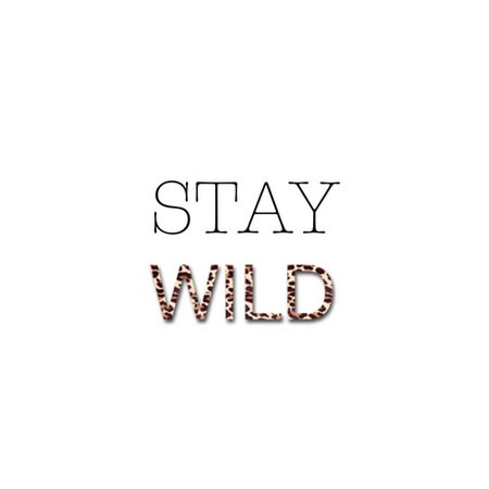 Stay wild uploaded by Lime & Co on We Heart It