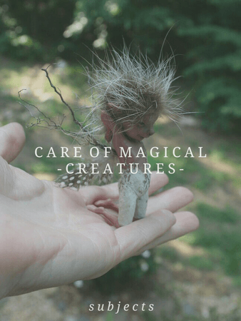 Care of Magical Creatures | Harry Potter