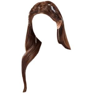 brown hair png twist back