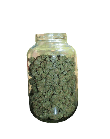 weed in a mason jar