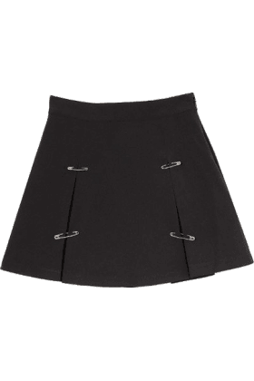 A Pin Pleated Skirt