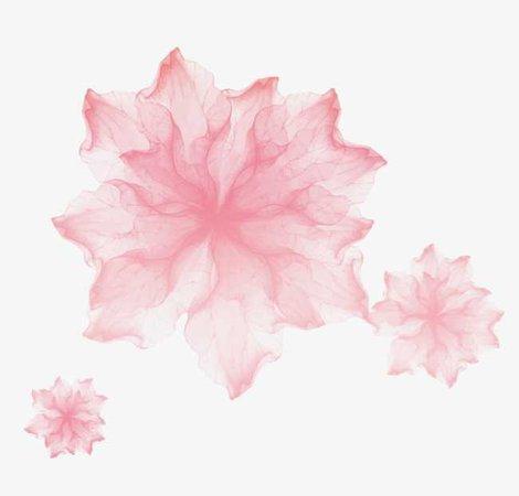 Pale Pink Blossoms (Art)
