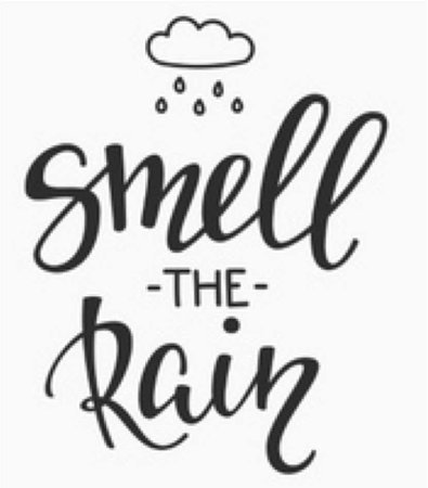 rain txt
