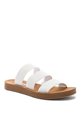 Steve Madden Pascale Sandal in White | REVOLVE