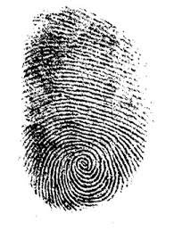 Risultato della ricerca immagini di Google per https://f1.pngfuel.com/png/30/323/685/detective-fingerprint-forensic-science-evidence-crime-scene-automated-fingerprint-identification-computer-forensics-court-png-clip-art.png