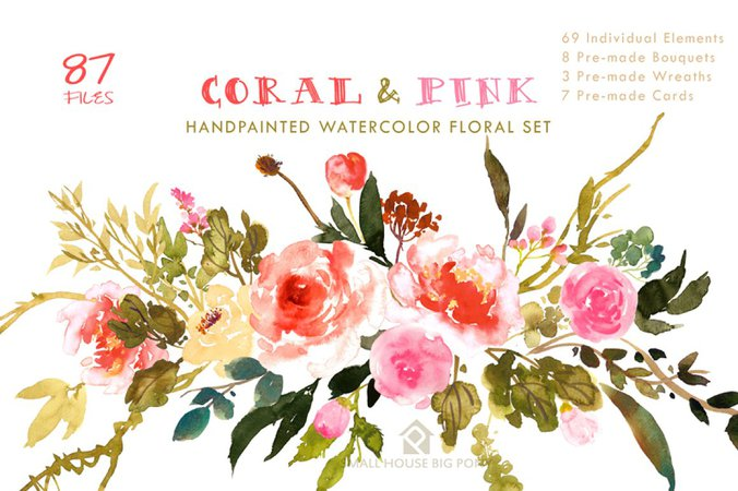 Coral & Pink - Flower Collection ~ Illustrations ~ Creative Market