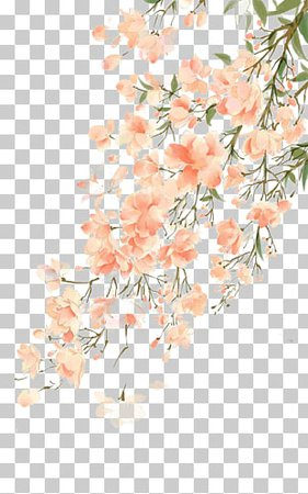 China Watercolor painting Qingming Illustration, Chinese antiquity beautiful watercolor illustration, pink cherry blossom flowering tree and tea PNG clipart | free cliparts | UIHere