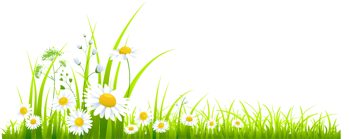 spring - Google Search