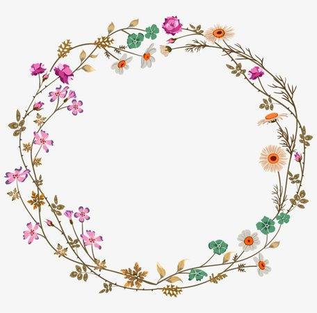transparent circle border - Google Search